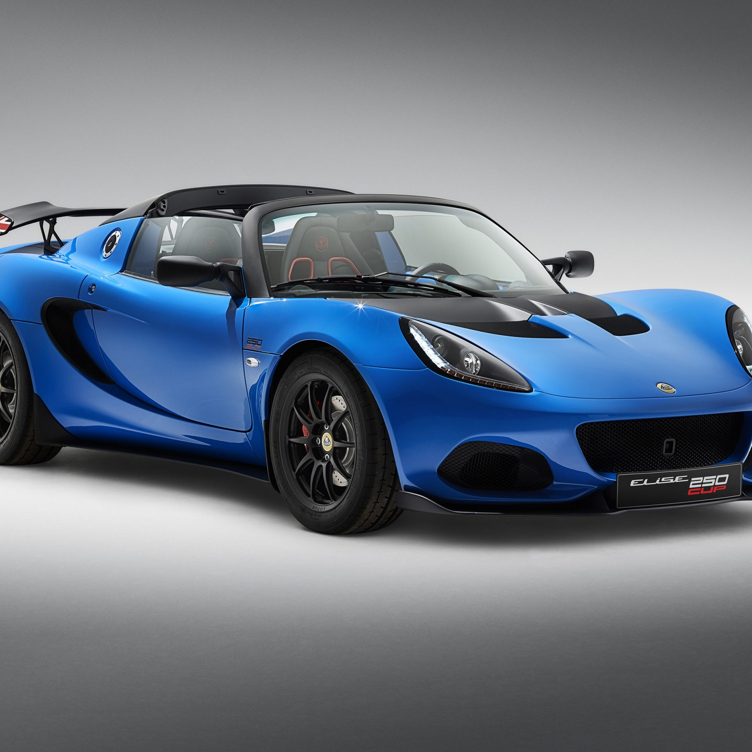 Blue Lotus Car
